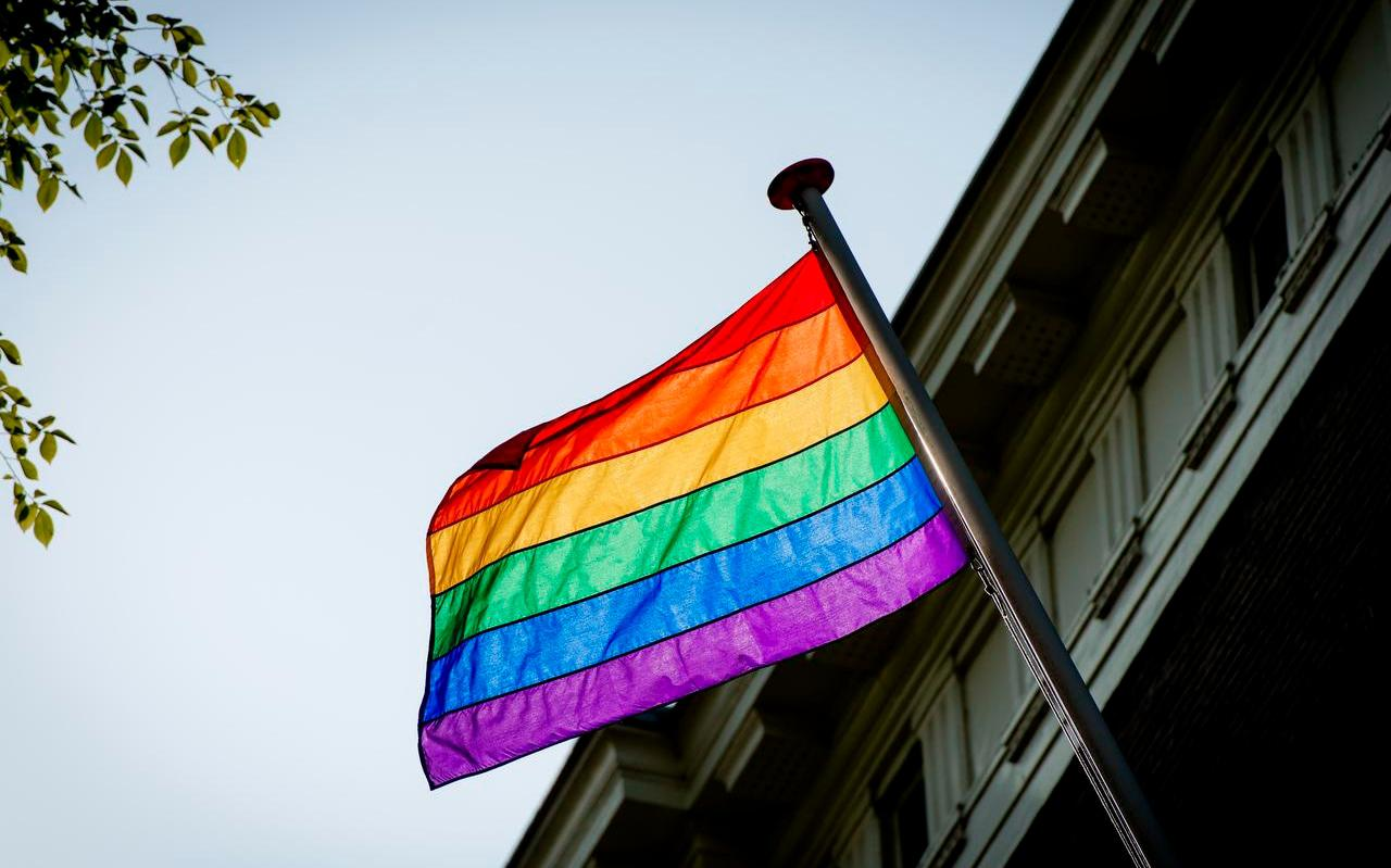 De regenboogvlag. Afbeelding ter illustratie.