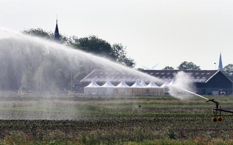 Beregening bij Ysbrechtum, eind mei 2018. De kans op dergelijke extreem droge jaren zal toenemen.