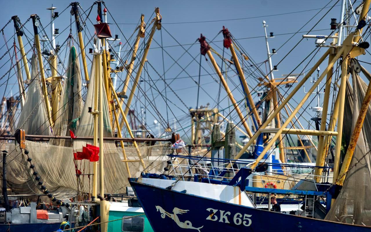 Wanneer er op de Waddenzee minder ruimte overblijft voor de garnalenvisserij, kan door het terugschroeven van het aantal vissers toch gezorgd worden dat de activiteit op zich nog blijft renderen.