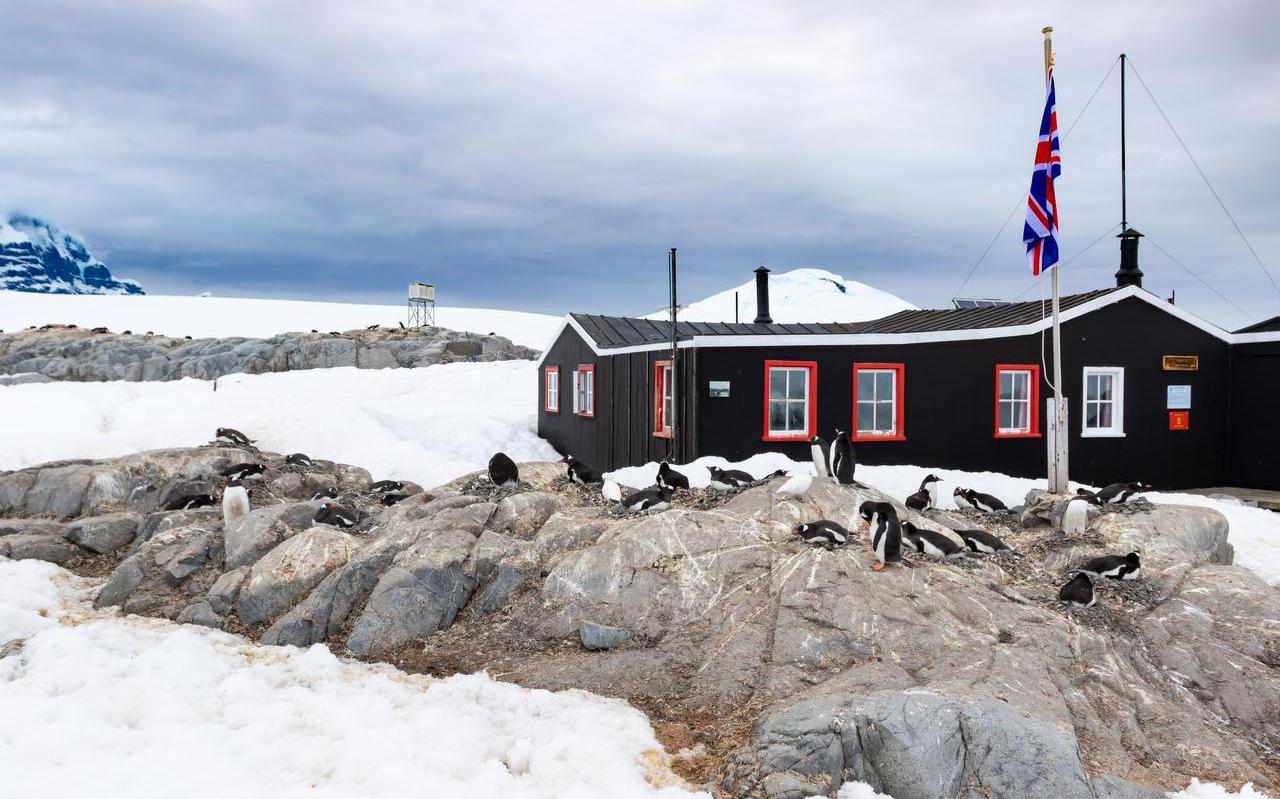 Op Antarctica zijn dit jaar weinig wetenschappers vanwege het virus.