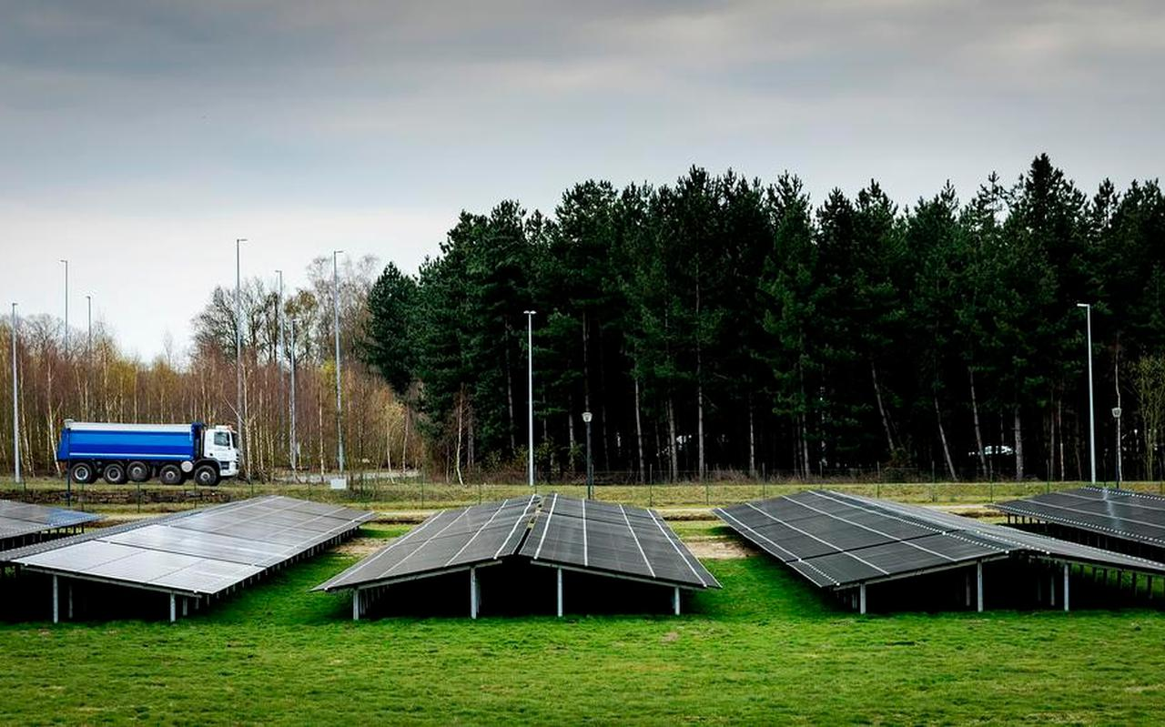 Overheden en ontwikkelaars besteden steeds meer aandacht aan de natuurlijke inpassing van zonnepanelen op land.