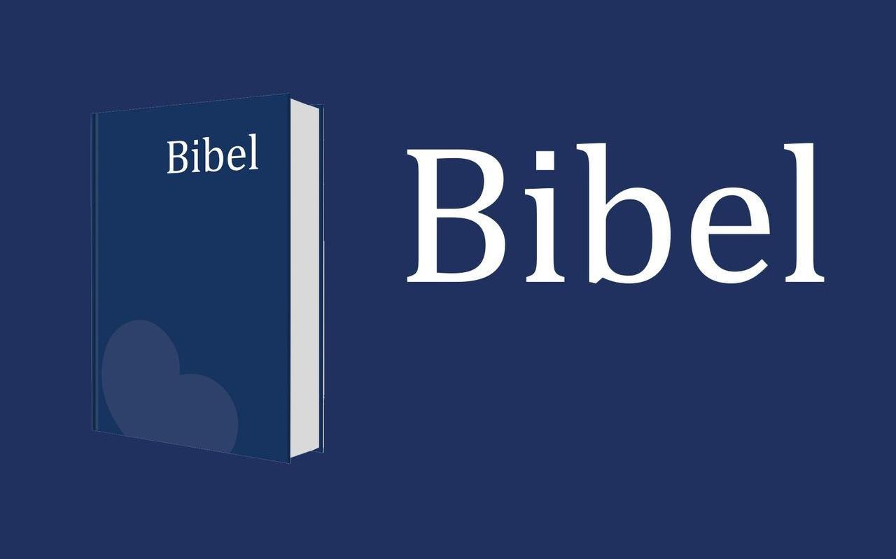 De Friese Bijbel uit 1978 wordt aangeboden in de edites van een Huisbijbel (zie foto) en als Huwelijksbijbel.