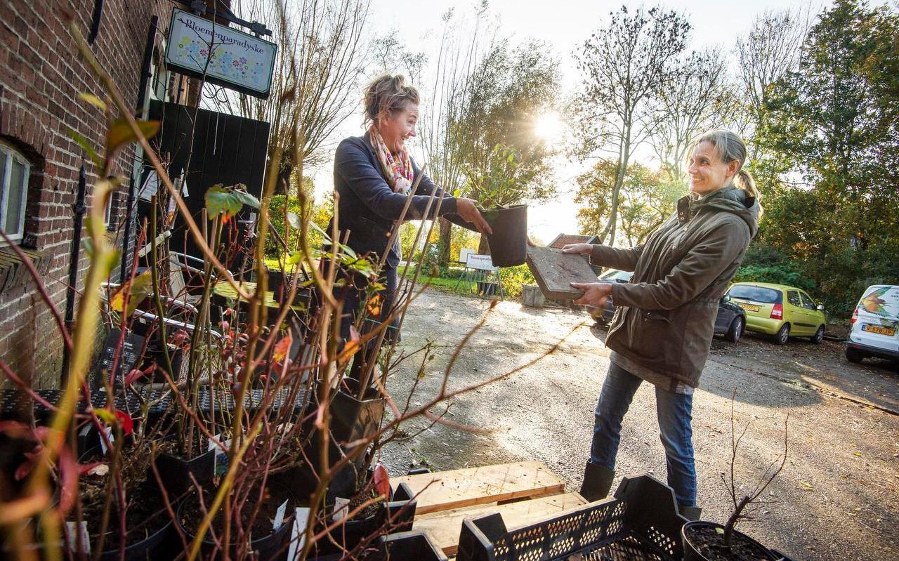 Noah Hoekstra (10) en Hester van der Zwaag (12) bij de cursus natuurfotografie.