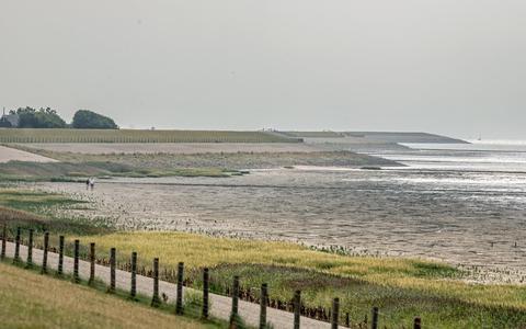 De zeedijk bij Koehool, richting Roptazijl.