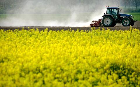 Een hogere olieprijs kan ervoor zorgen dat meer land gebruikt wordt voor de productie van gewassen voor biobrandstof, zoals koolzaad.