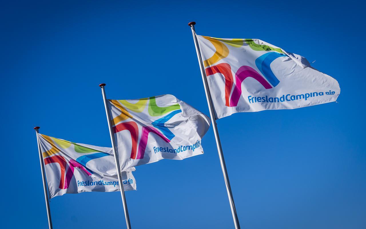 Vlaggen van zuivelconcern FrieslandCampina.