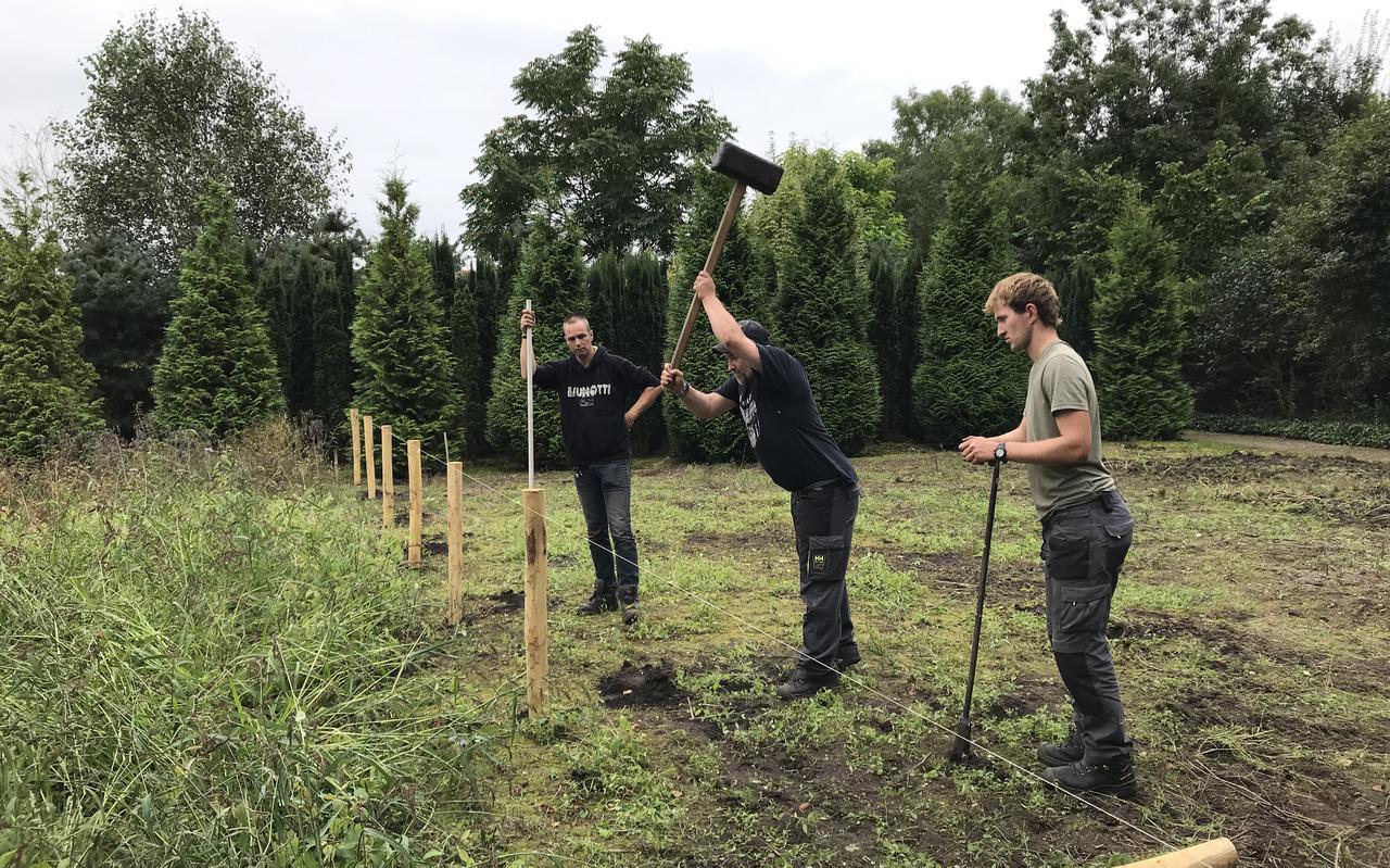 Assistent-hoveniers zijn op een braakliggend stuk bezig om palen in de grond te slaan.