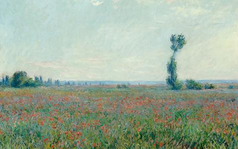 Claude Monet, Champ de coquelicots, 1881. Collectie Museum Boijmans Van Beuningen, Rotterdam. Verworven met de verzameling van: D.G. van Beuningen 1958. Foto: Studio Tromp.