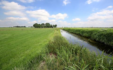Veenweidegebied bij Aldeboarn, De Veenhoop en Tijnje.