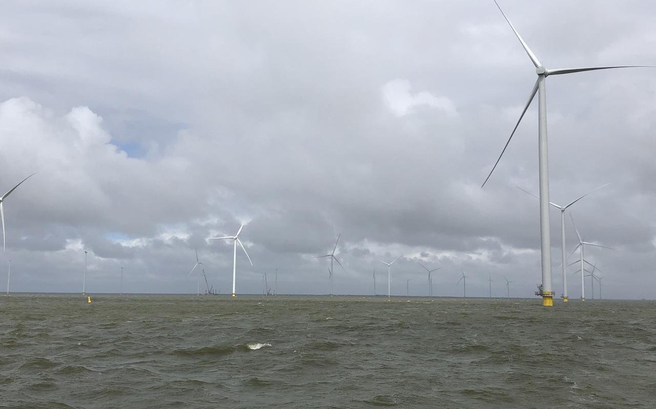 Windpark Fryslân in aanbouw, als er 27 van de 89 windturbines zijn opgebouwd.