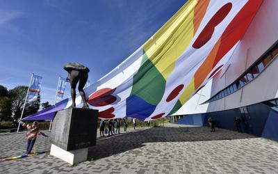 De 'Friese regenboogvlag'.