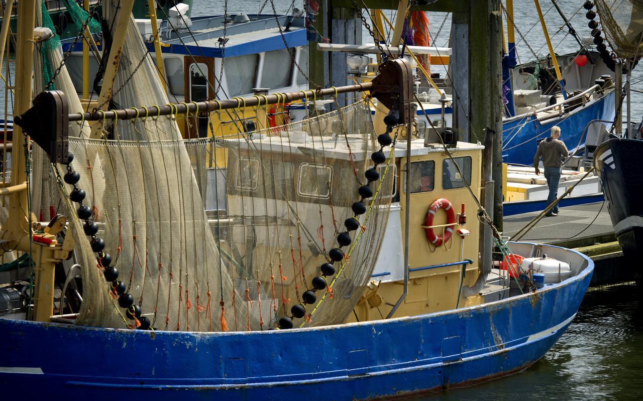 Garnalenkotters in de haven van Lauwersoog.