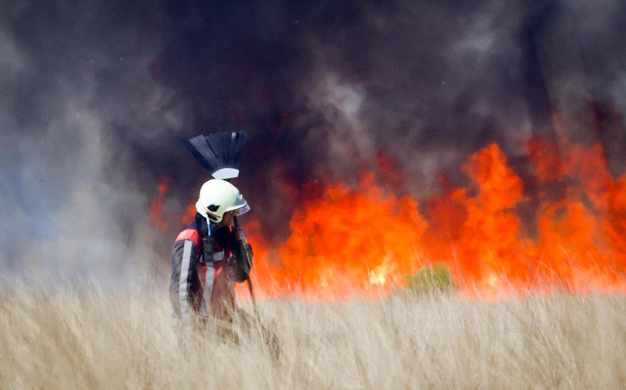Natuurbrand in het Fochteloërveen in 2011.