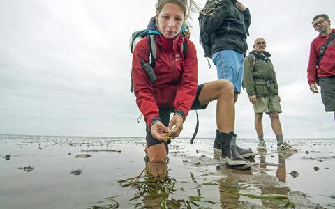 Laura Govers met zeegras in haar hand.